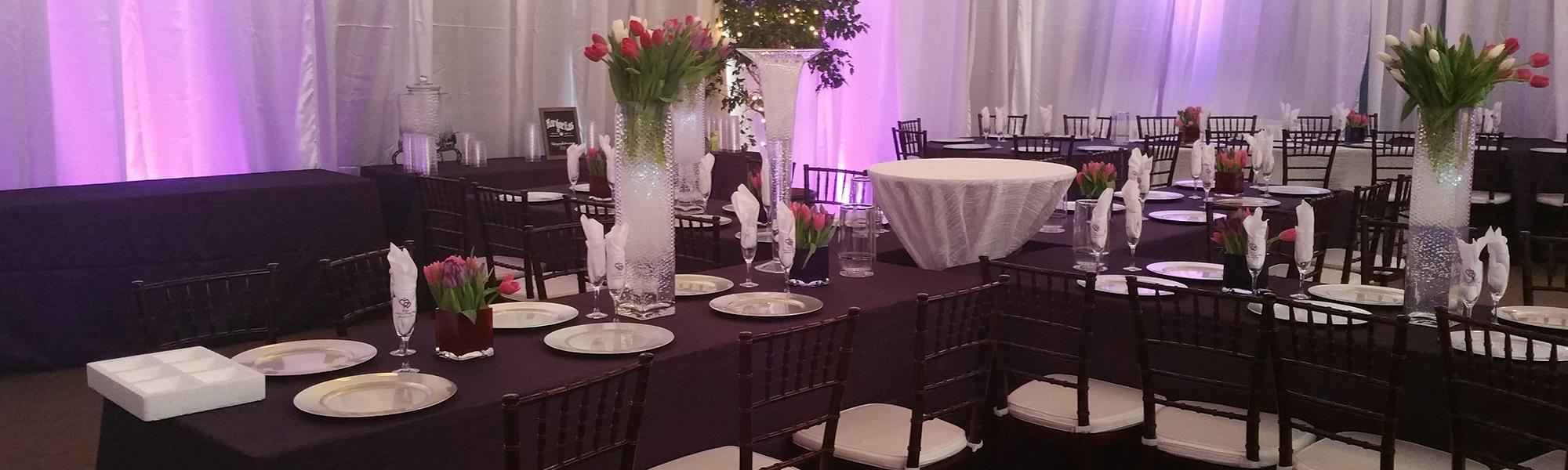 premierpartyonline wedding rental PreviousNext