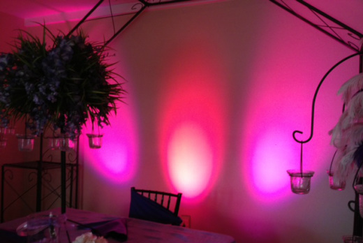 Premier Party Rentals - LED Lights 6