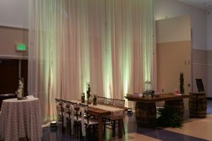 Premier Party Rentals - Pipe and Drape 11